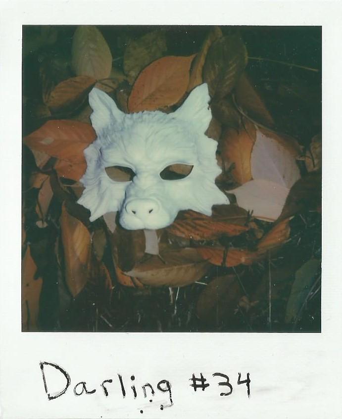 34 Night Howl